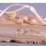 Piña marinada con flor de lavanda y parfait de praliné de avellanas