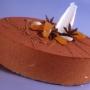Pastís de mousse d'ametlles crues amb cremós d'anís estrellat i abricocs.